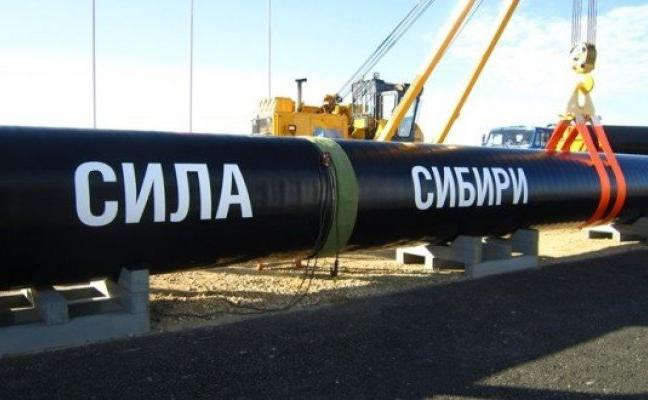 НАШИ В СИБИРИ: Трудовые мигранты на строительстве газопровода в тайге