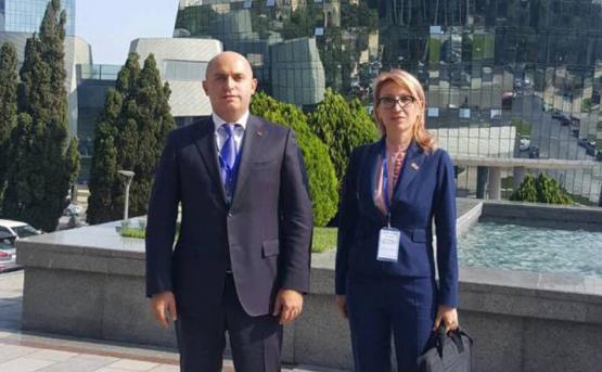 Ашотян о визите в Баку: вопросы безопасности меня не волновали
