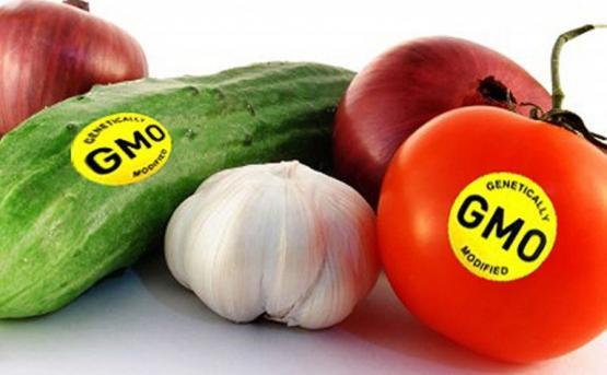 В Армении внедрят систему маркировки ГМО-продуктов