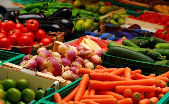 Экспорт фруктов из Армении вырос на 13 970 тонн